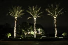 Florida Christmas Tree Lighting Installation